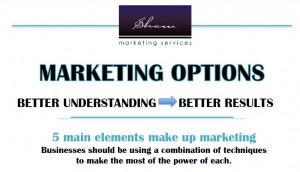 Marketing options infographic header