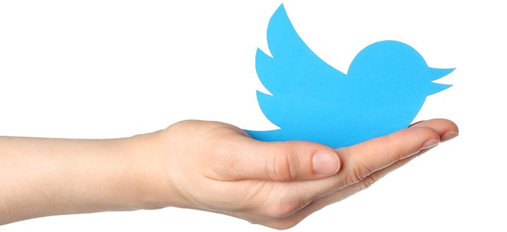twitter for business marbella