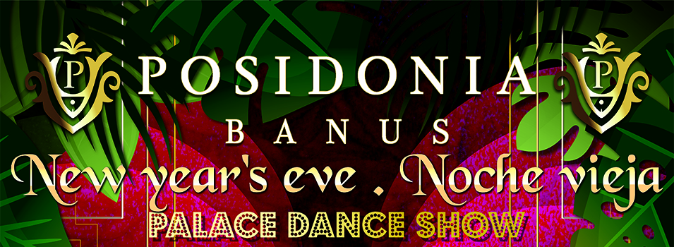 New Year's Eve Palace Dance Show and Party