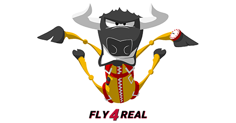 Fly 4 Real